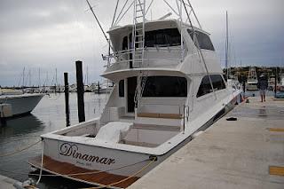 Dinamar Yacht, Palmas del Mar