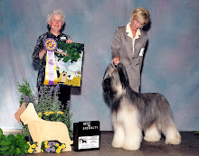 Specialty Best In Show shown by friend Pat Murray