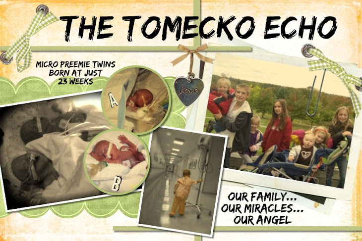 The Tomecko Echo