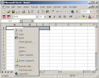 Excel 2007 2003 microsoft excel formula function pivto for Html table merge cells
