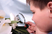 NAMC montessori curriculum explained sciences materials activities philosophy looking at flower with magnifying glass