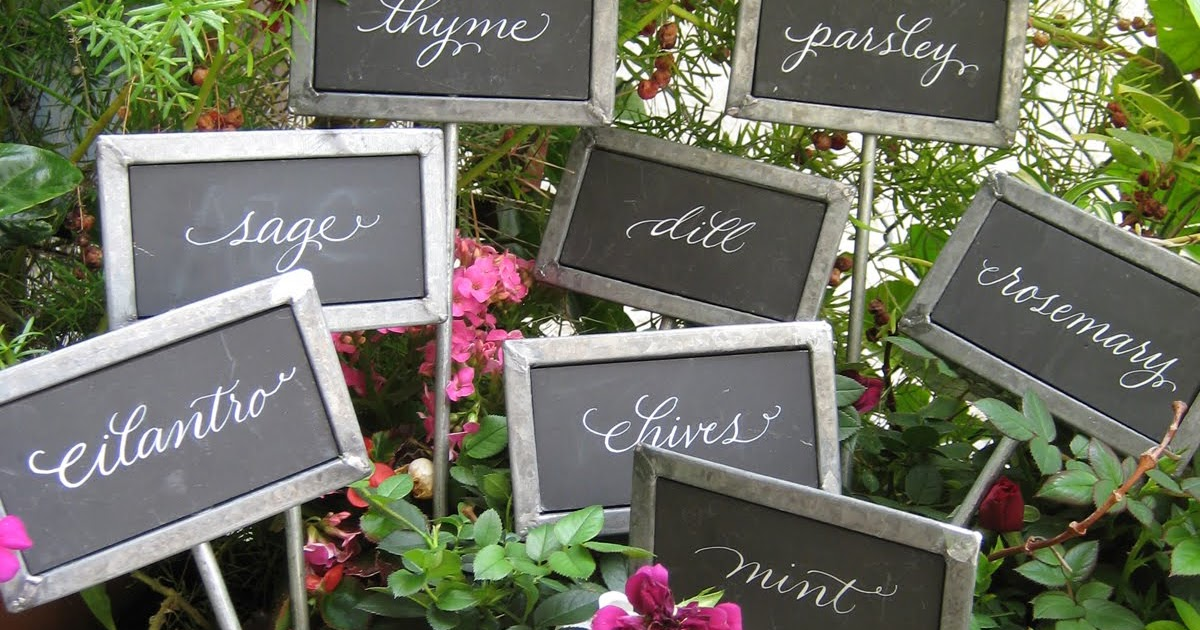 Charming A To Z Calligraphy