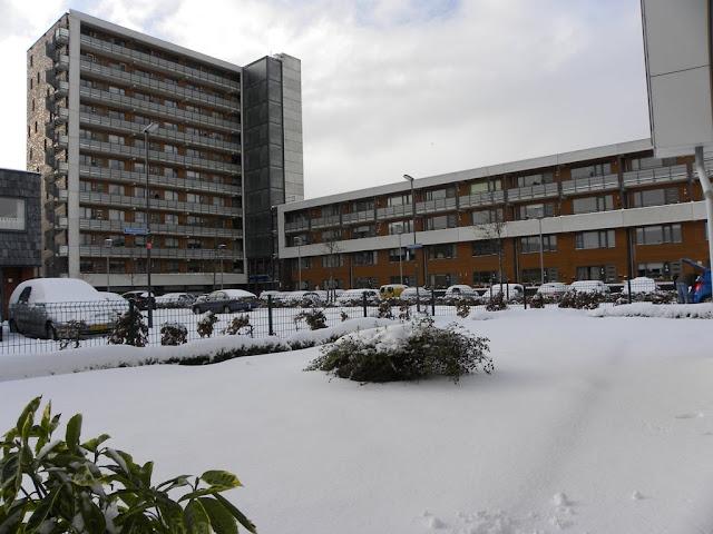 snow Zoetermeer