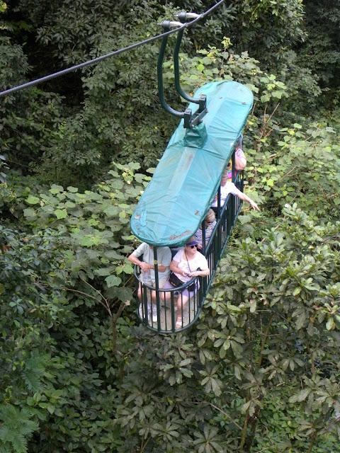 Bosque Lluvioso rain forest