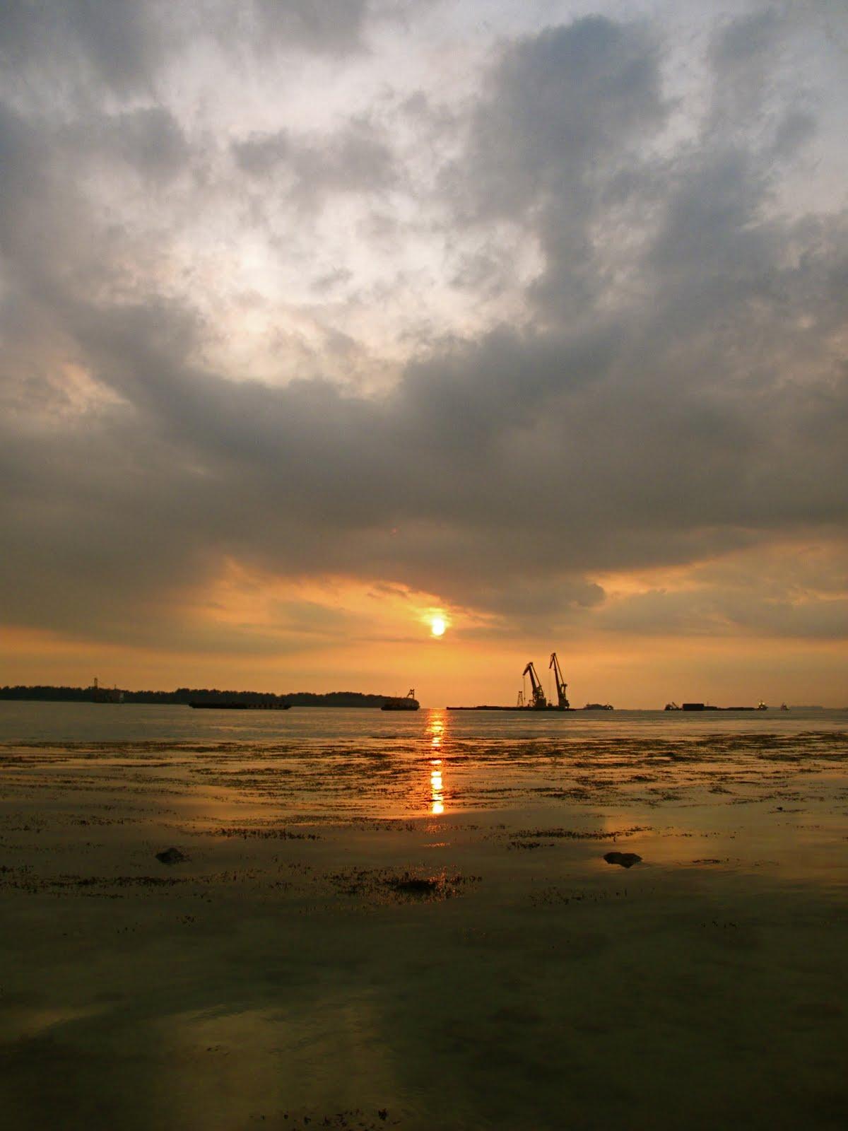 Into The Wild Pulau Hantu January 2011 Archives Situs Agen Sbobet Bandar Ibcbet Taruhan Judi Saturday 22