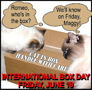 International Box Day