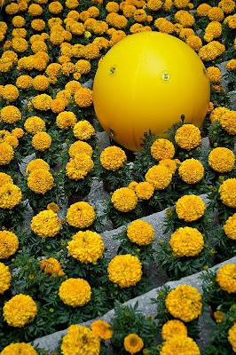 Temps de flors 2010