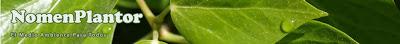 Identificador plantas