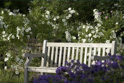 Concurso jardines
