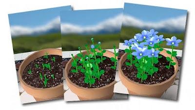 Flower garden iPhone