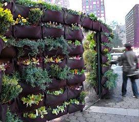 muro vegetal - Jardineras Verticales