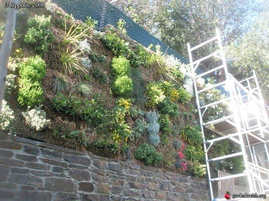 Jardines verticales y cubiertas vegetales noviembre 2010 for Muro verde sistema constructivo
