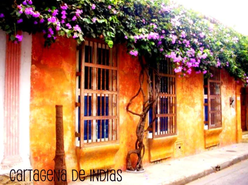 PROYECTOS DE INGENIERIA -Cartagena De Indias
