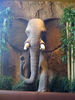 Elephant charging!!