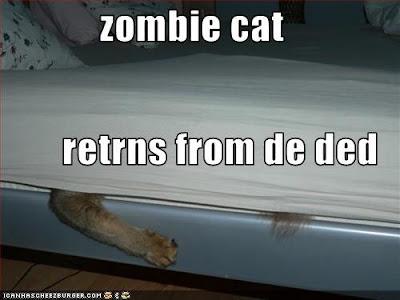 http://1.bp.blogspot.com/_Wj5Ynf8e-Lk/SYH-Bvzrm8I/AAAAAAAAAeE/ZSPeX2CKZfw/s400/zombie+cat+from+the+dead.jpg