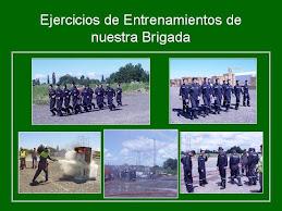 Brigada Emergencia
