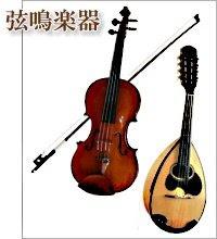 弦鳴楽器(げんめいがっき)