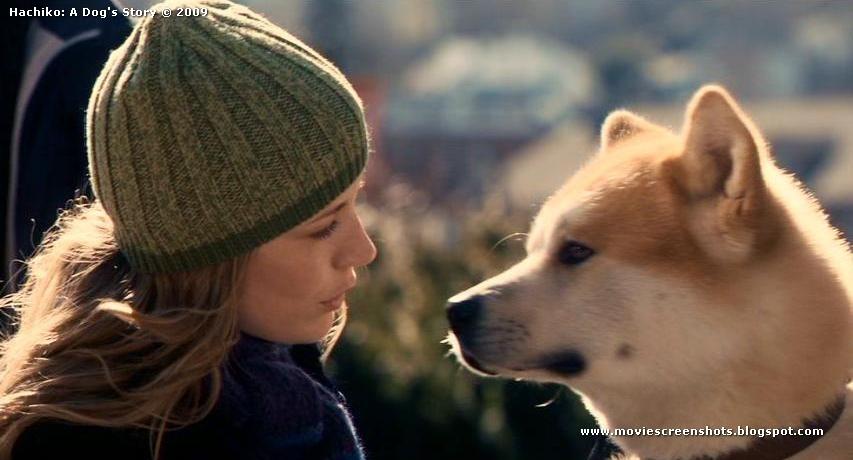 hachiko a dog s tale Tình yêu, lòng trung thành của hachiko chờ chủ nhân đến hơi thở cuối cùng - câu chuyện đó được nhiều người truyền lại cho nhau và trở thành huyền thoại cao cả về một chú chó mà người nhật.