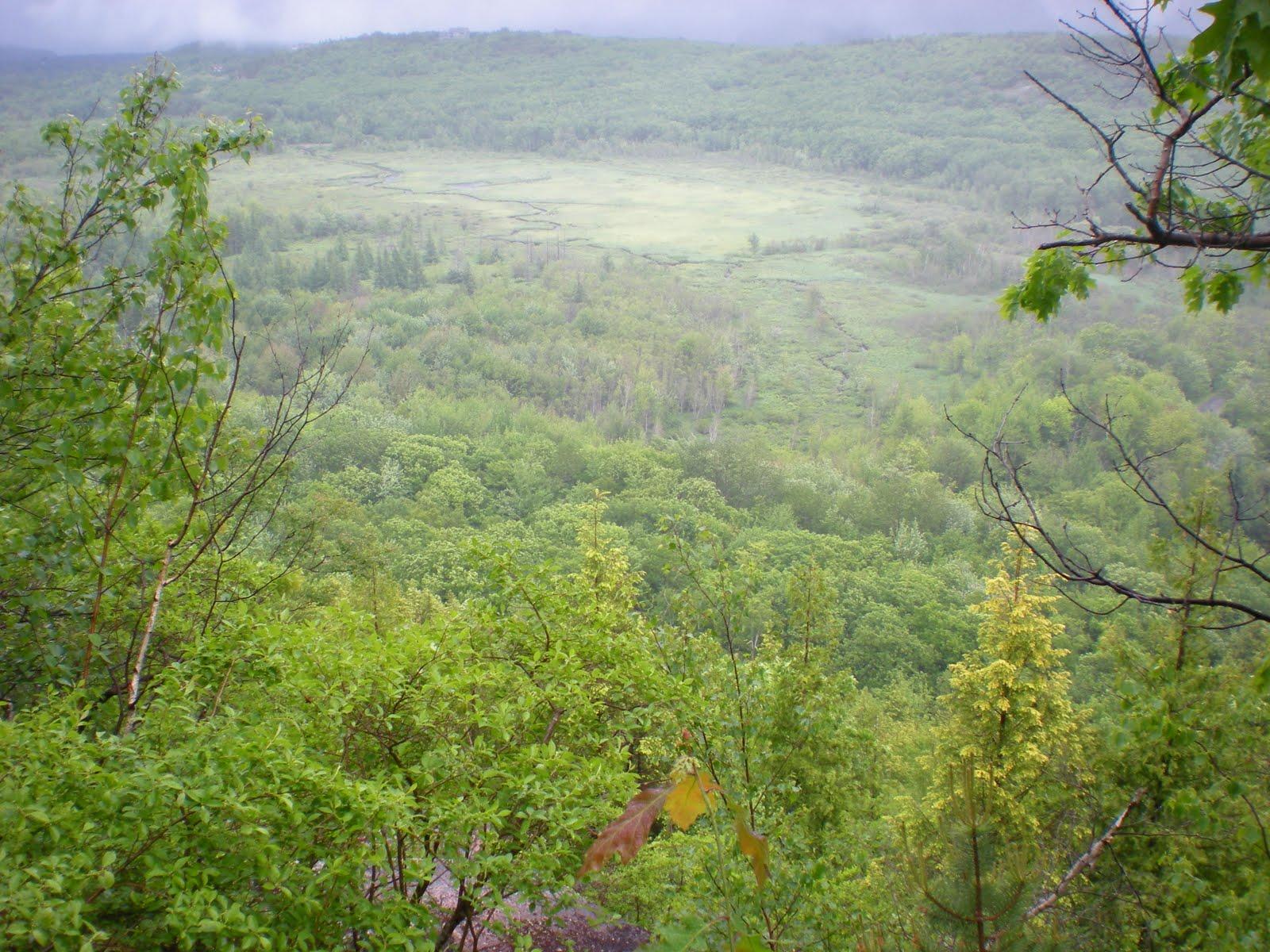 Maine 2010 Emery Path Acadia National Park