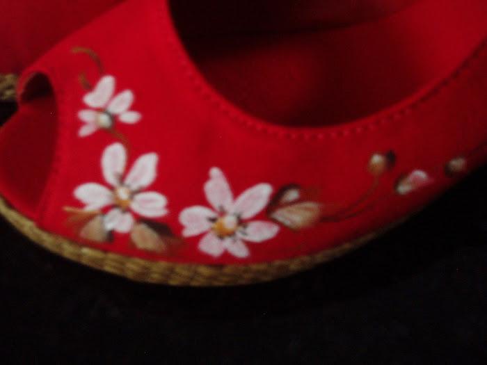 sapato pintado