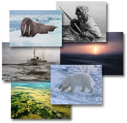 http://1.bp.blogspot.com/_WnZTW-hPizQ/S8JXFolOe6I/AAAAAAAAACo/wVHChm1lyY8/s1600/ekosistem.jpg