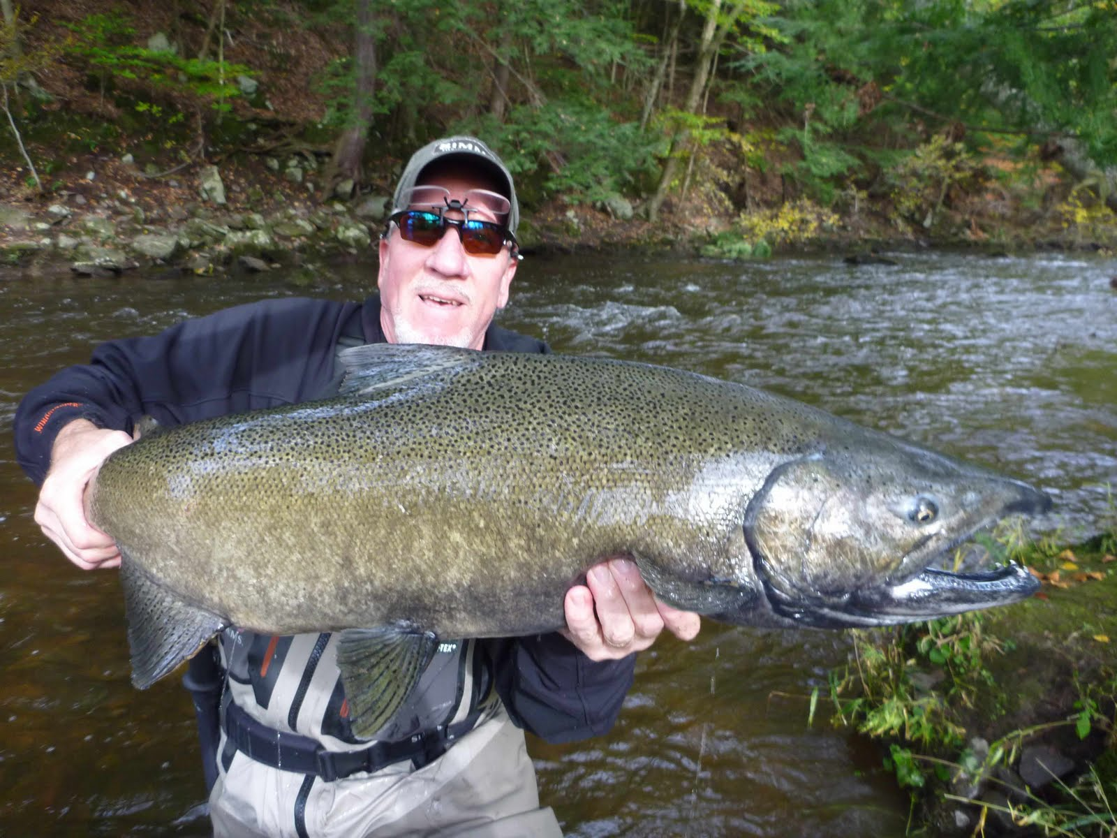 Salmon country guide october 13 back in pulaski ny and for Salmon fishing pulaski ny