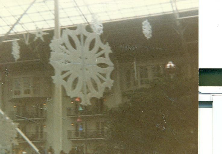 From a trip to the OPRYLAND 4 acre jungle at Christmas