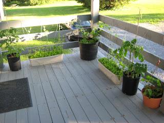 Deck Gardening