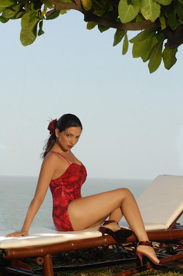 Red Hot Shama Sikandar Sizzles In Swimsuit