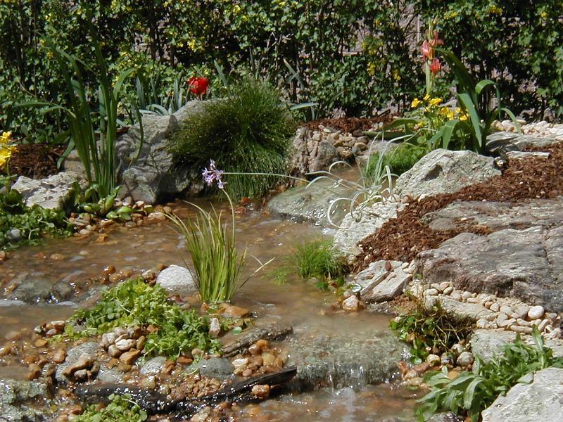 ... Fort Collins, Loveland, Greeley, Windsor: Pet Friendly Landscape Tips