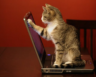 http://1.bp.blogspot.com/_Wv-wCfXeXHk/TAu5SUR2YNI/AAAAAAAAAeE/h2jpt2bU3LU/s1600/bersih-komputer.jpg