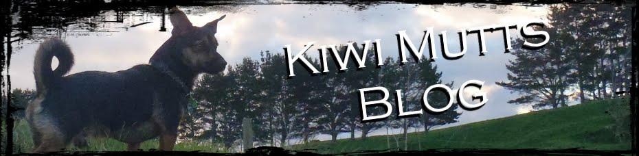 Kiwi Mutts