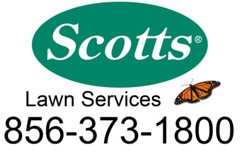 Image Result For Scotts Lawn Services