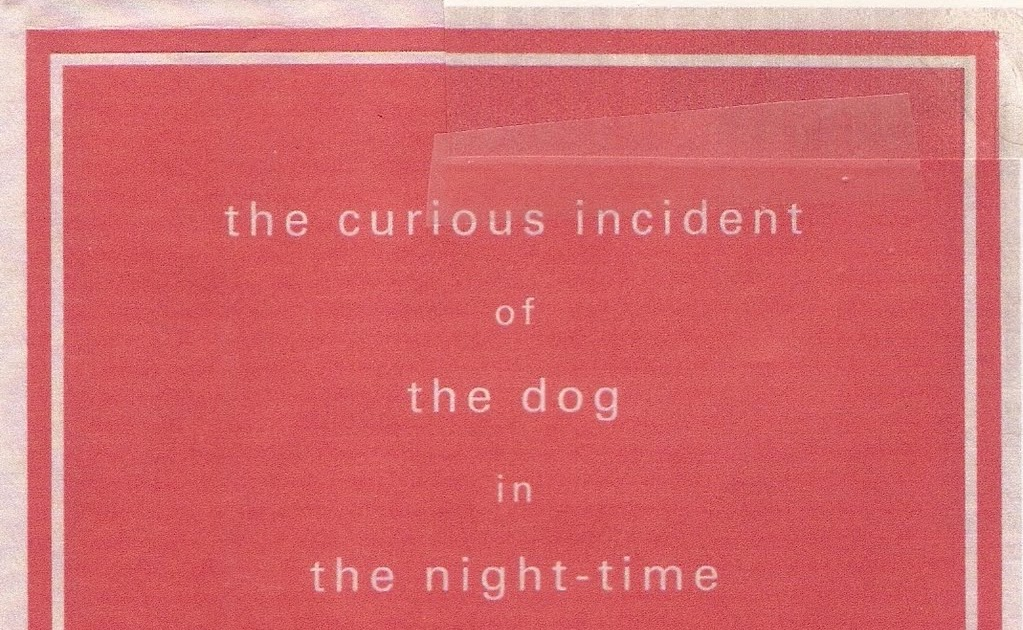 the curious incident of the dog in the nighttime essay introduction