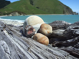 Cable Bay - South Island New Zealand