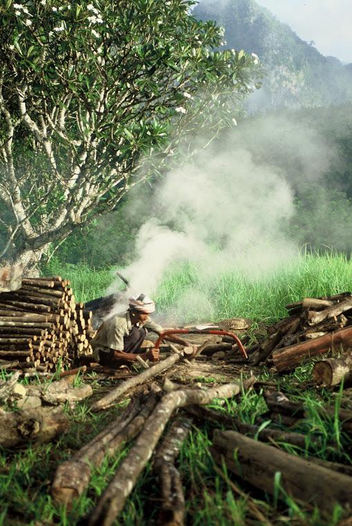 วิถีชีวิตของชาวบ้านรอบๆเมืองยะลา
