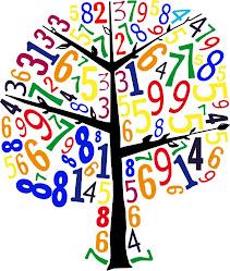 El mundo de los números