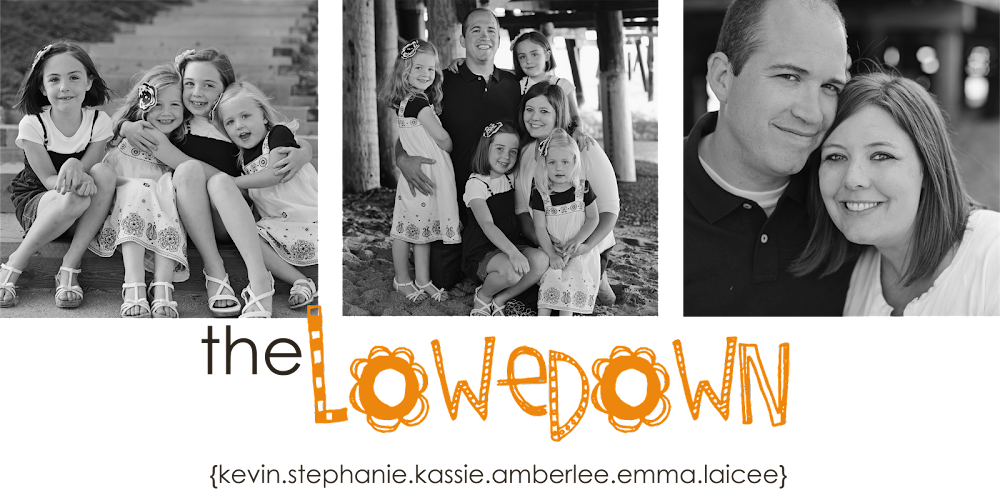 The Lowedown