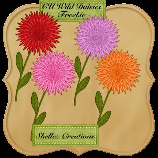 Wild Daisies+Freebie CU (Shellez Creations) Shellez_Wild+Daisies+Freebie+CU