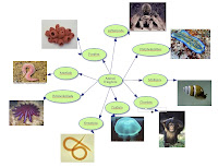 click on the concept map to