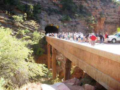 Walkers begin to enter the Zion Tunnel during the Centennial Tunnel Walk event