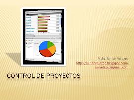 Control de Proyectos