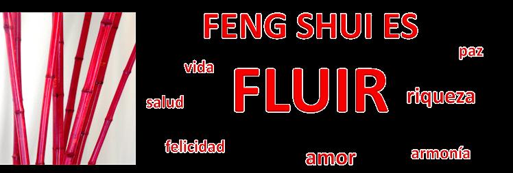 FENG SHUI  TIPS 88