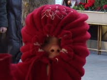 When it's cold, it's cold.
