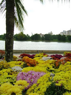 View of Putrajaya Lake with chrysanthemum beds in the foreground
