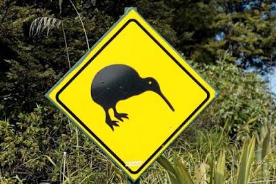 kiwi sign new zealand