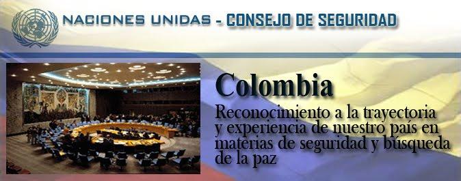 la seguridad en colombia: