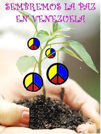 VENEZUELA UNIDA