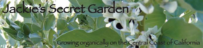 Jackie's Secret Garden
