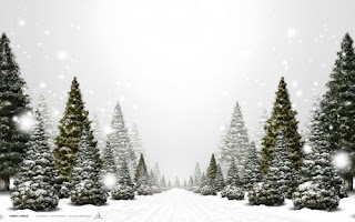 Natural Christmas Tree Background